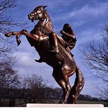 Global Horse